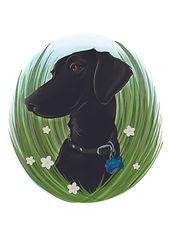 Erica - Dog 5x7 Ratio CMYK.jpg