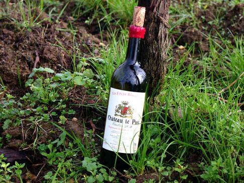 Château le Puy - La nature au service du vin