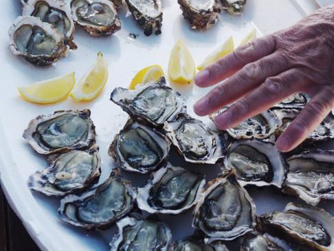 Accord #6 Vin et huîtres