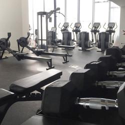 HonorBond Eq gym2