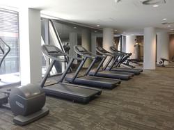 honorbond 883 gym