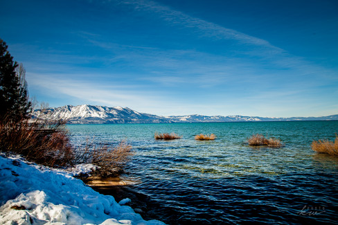CA Honey Lake (1 of 1)-9.jpg