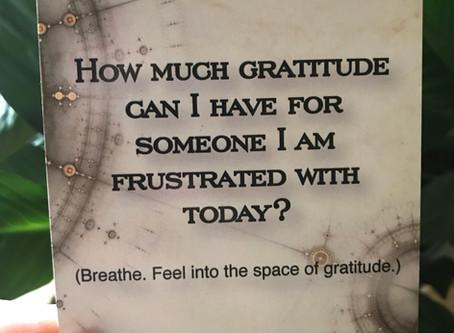 Frustrated Gratitude