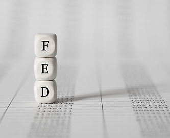 Word FED made with wood building blocks,