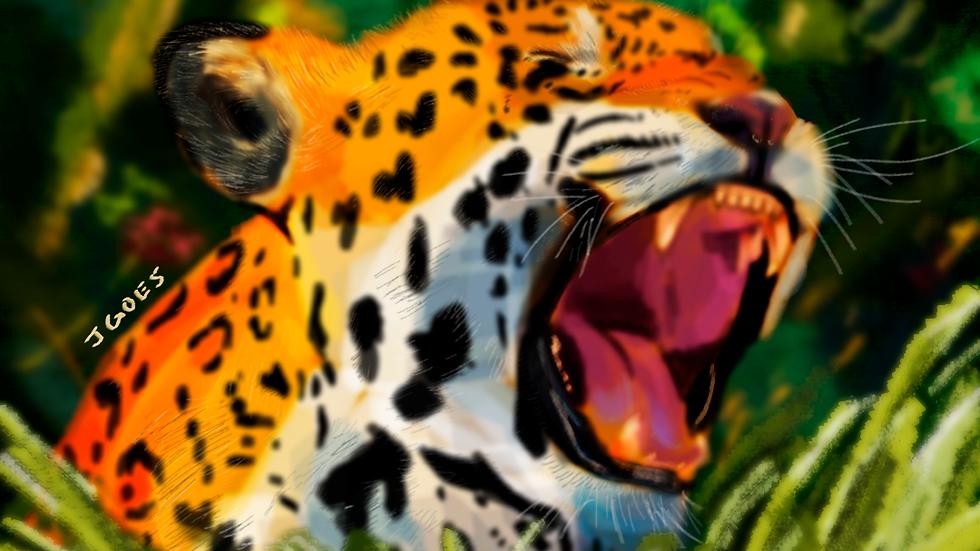 O grito da onça pintada