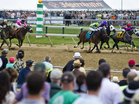 Big Web's 2019 Preakness Picks