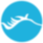 ChituBox Logo.png