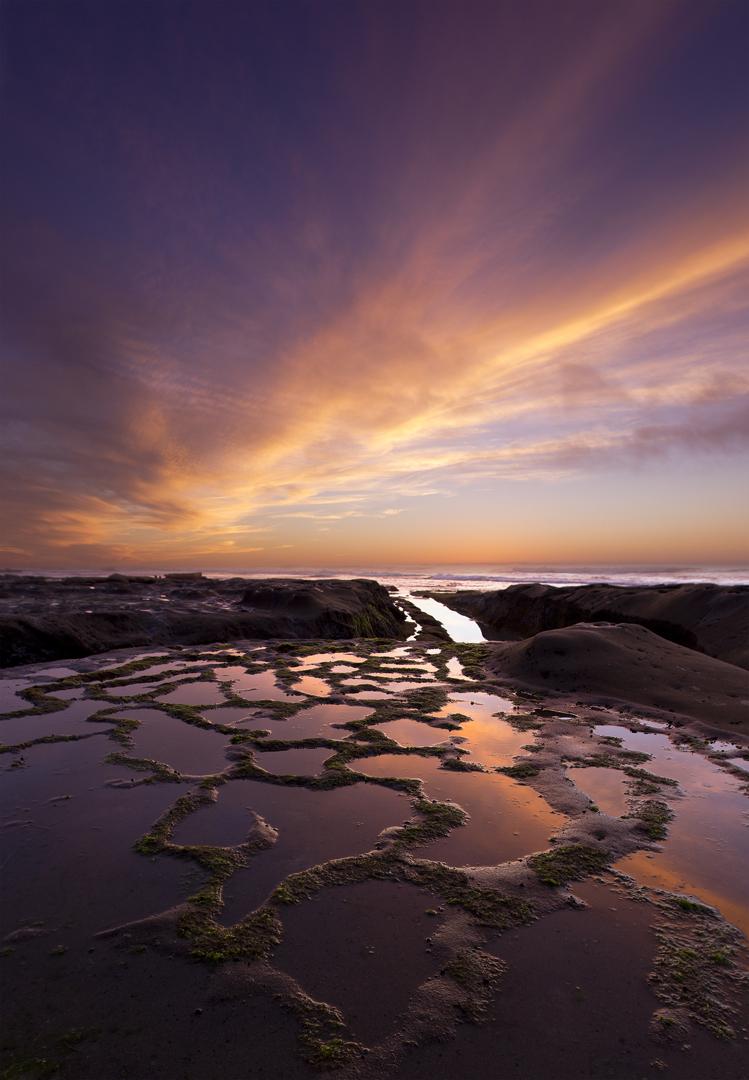 Serenity Reef La Jolla