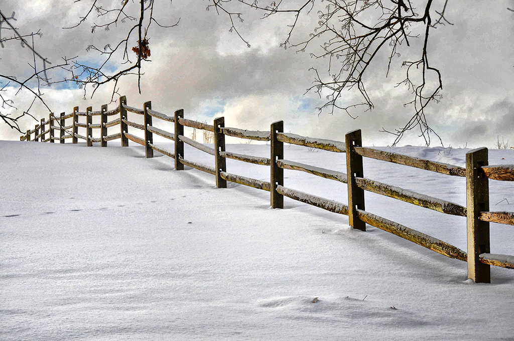 Fence in White