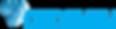 nanoveu logo_1.png