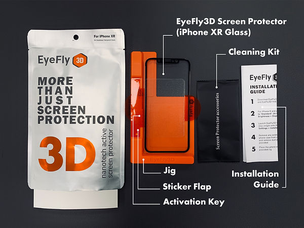 EyeFly3D XR detailed.jpg