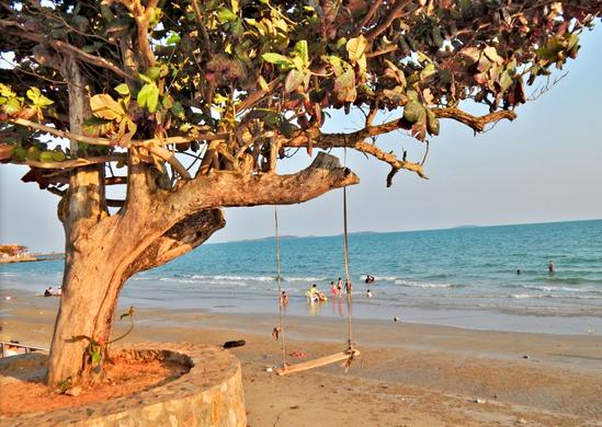 beachPhoto5.png
