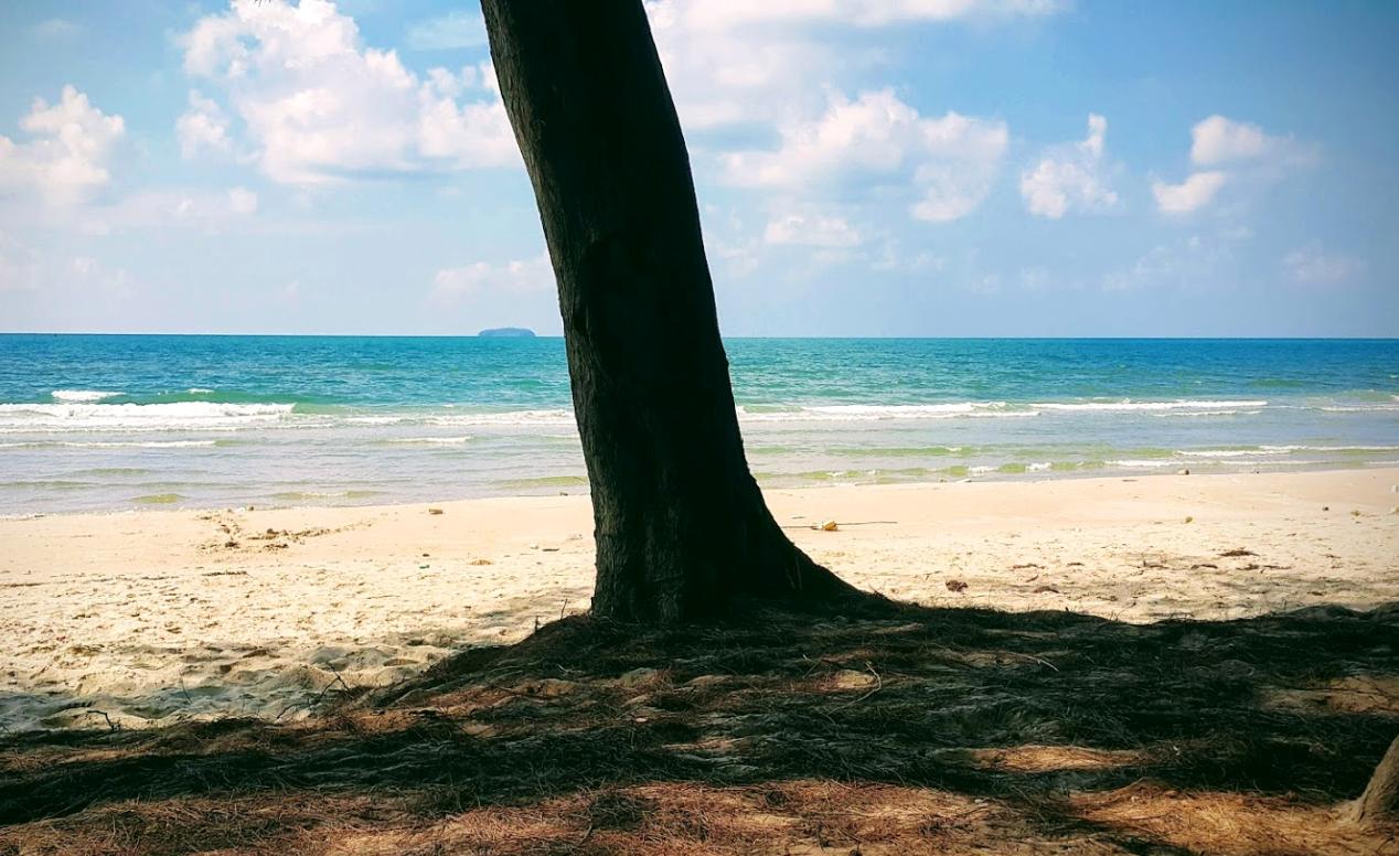beachPhoto6.png