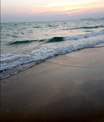 beachPhoto4.png