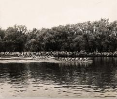 1956 Dom Day 1000 M Champs Island copy.j