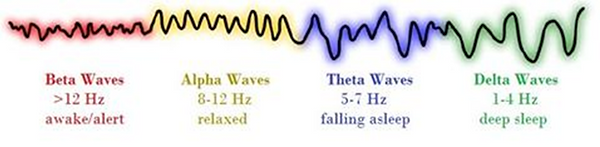 Brain Waves.png