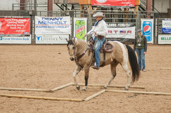 Working Equitation Horse Clinic