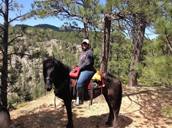 In the Black Hills