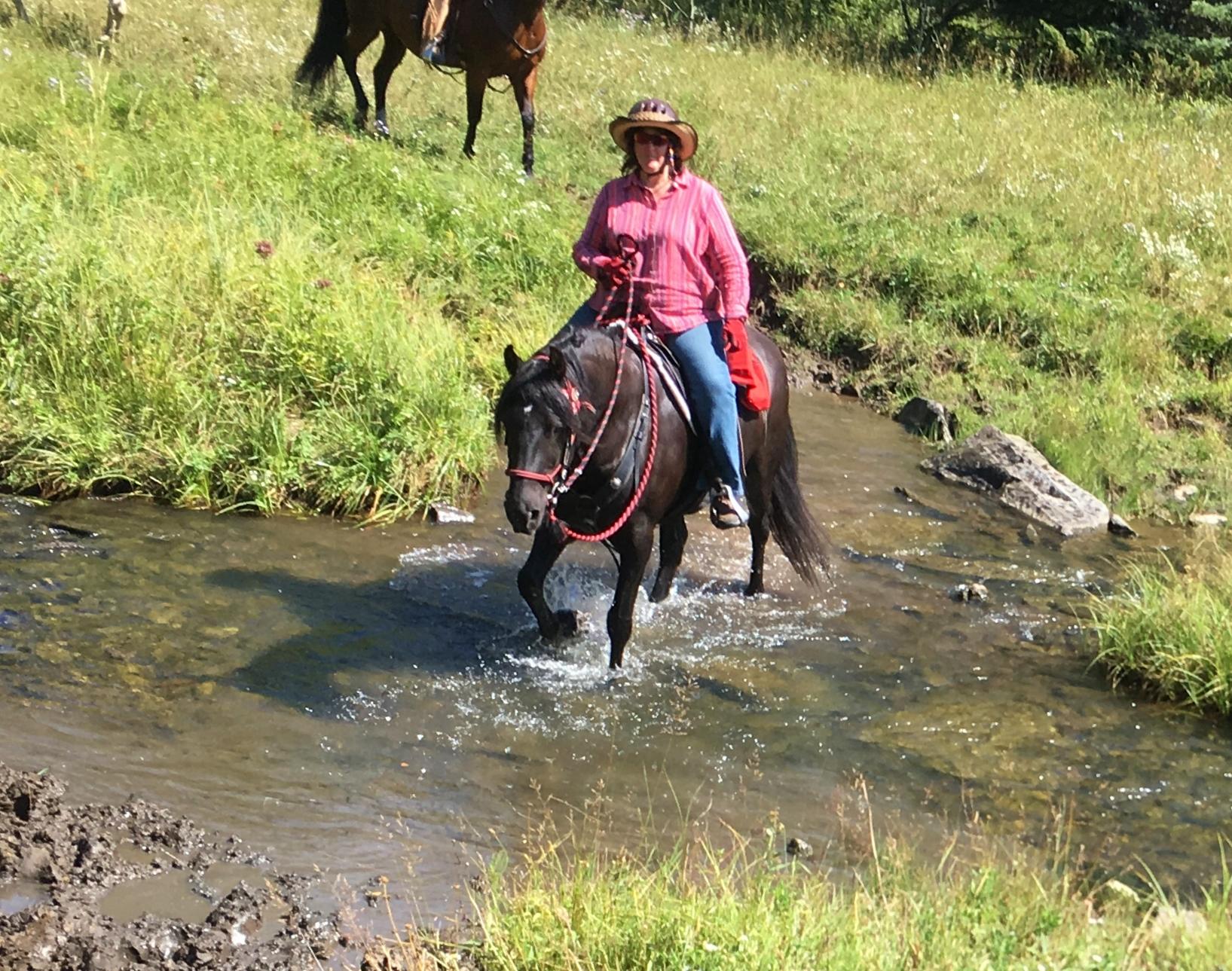 Water Crossings a Breeze!
