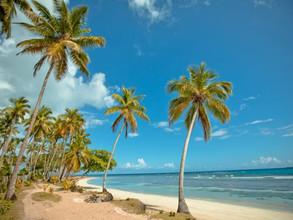 Las 7 mejores playas de América Latina en 2020
