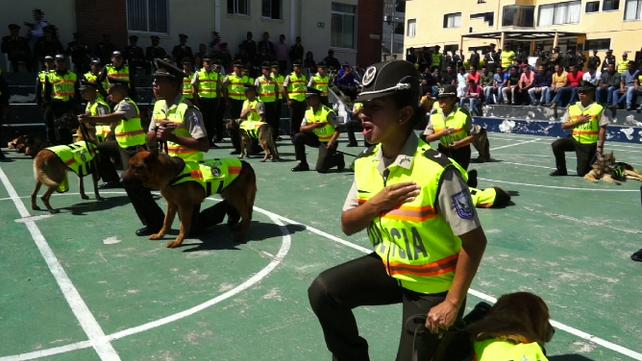 Retiran a 16 Agentes caninos de la Policía de Ecuador con emotivo homenaje (video)