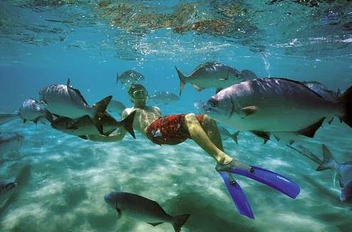 Snorkeling en Islas Galapagos, Ecuador