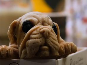 ¿Podría comerse este cachorrito en un restaurante en Taiwán? Hay quienes lo hacen sin remordimiento