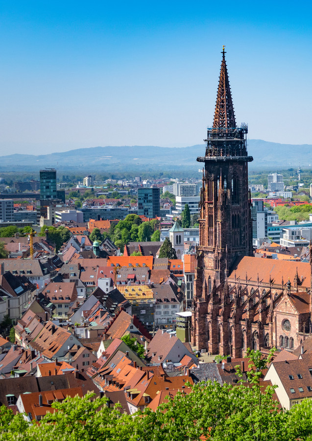 Freiburer Münster