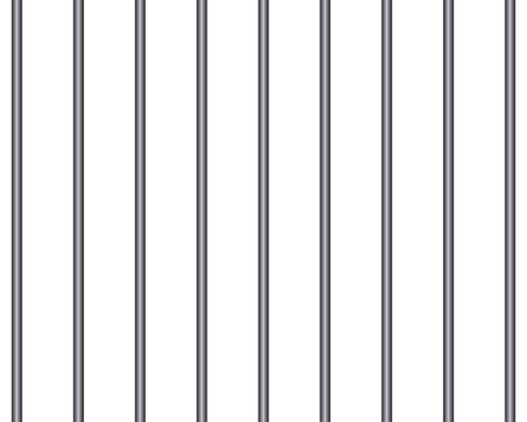cage-1161869_960_720.png