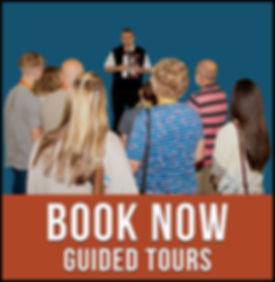 book now guided tours.jpg