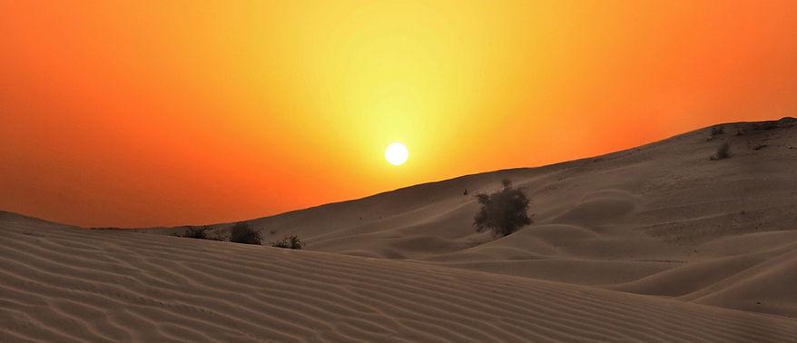 FAR-Desert-Placeholder-8706-KC_edited.jp