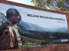 Animals, Wine, and Mandela