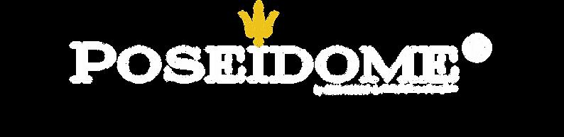 LOGO POSEIDOME - BLANC 2.png