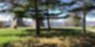 Grass yoga location.jpg