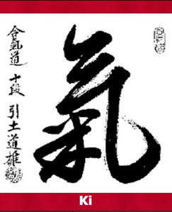 Ki is the concept taught in Aikido - a spiritual practice that Kathryn M. advocates to to her clients in order to find peace during difficulties and stress.