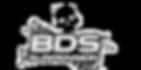 logo-noBgk.png