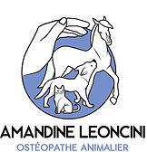 Logo_Amandine leoncini ostéopathe animalier_JPEG_COULEUR.jpg