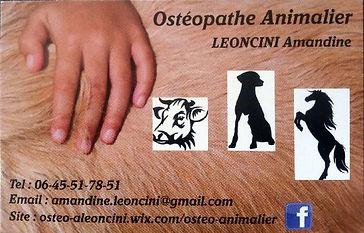 Ostéopathe animalier LEONCINI Amandine : ostéopathe pour chevaux, ostéopathe pour chien, ostéopathe pour chat : carte de visite