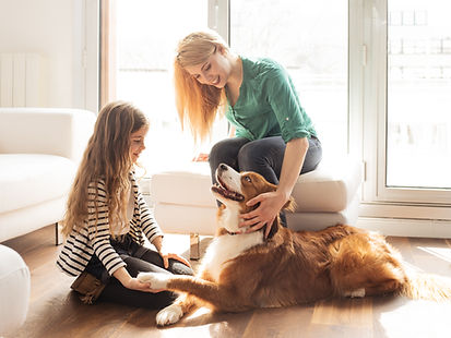 Chien en famille photo lifestyle publicité