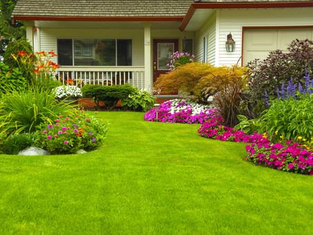 3 Hot Landscape Design Ideas For Summer 2020