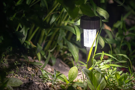 solar lanterns garden light with shrubs