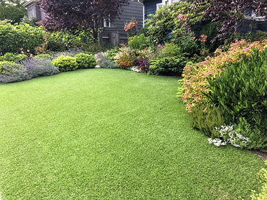 A beautiful artificial lawn in the front