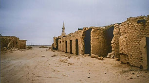 Arar.jpg