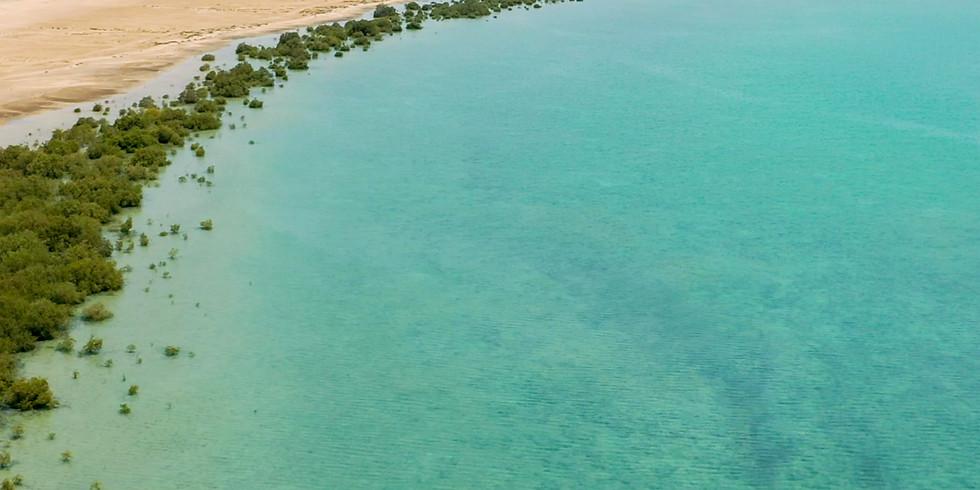 جزر فرسان