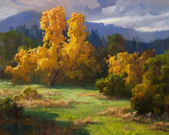 Mid October