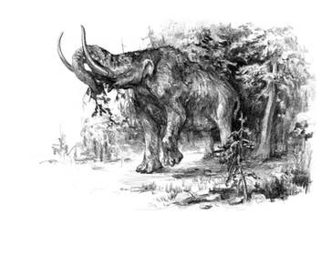 Munching Mastodon 3.jpg