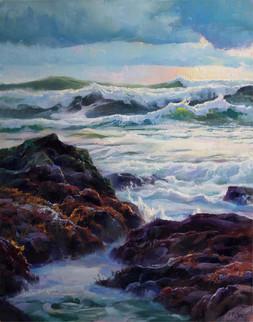 Intertidal Evening