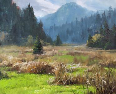 Wild Pasture