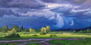 Meadowlark Skies