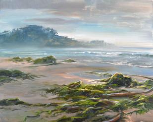 The Glistening Shore